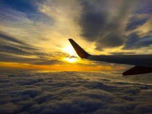 Flyskræk kan fjernes med hypnose
